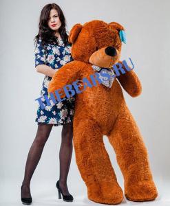 """""""большие медведи в Новосибирске"""""""